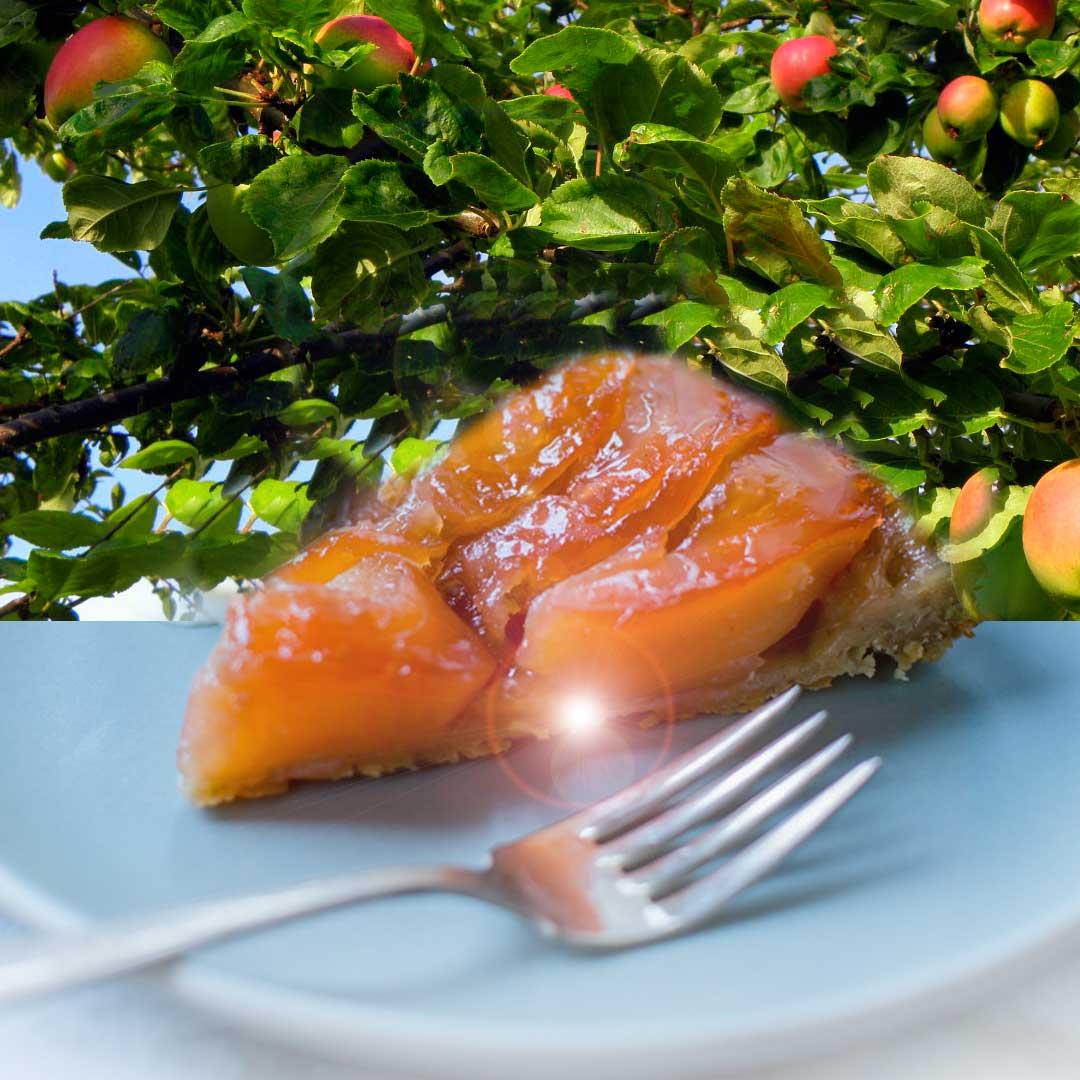 Tarte Tatin er en klassisk fransk eplekake mad karamelliserte epler og smørdeig.