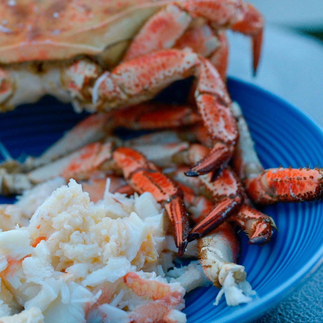 Krabbe fra HItra