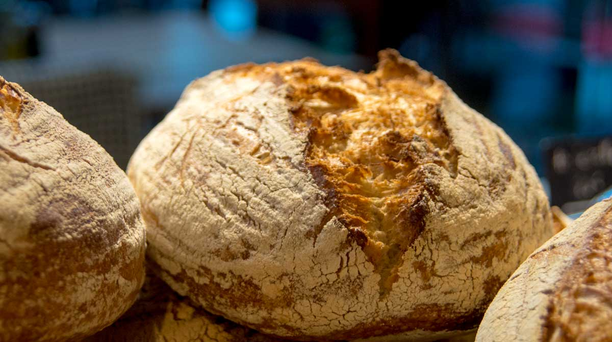økologisk brød fra Maschmanns
