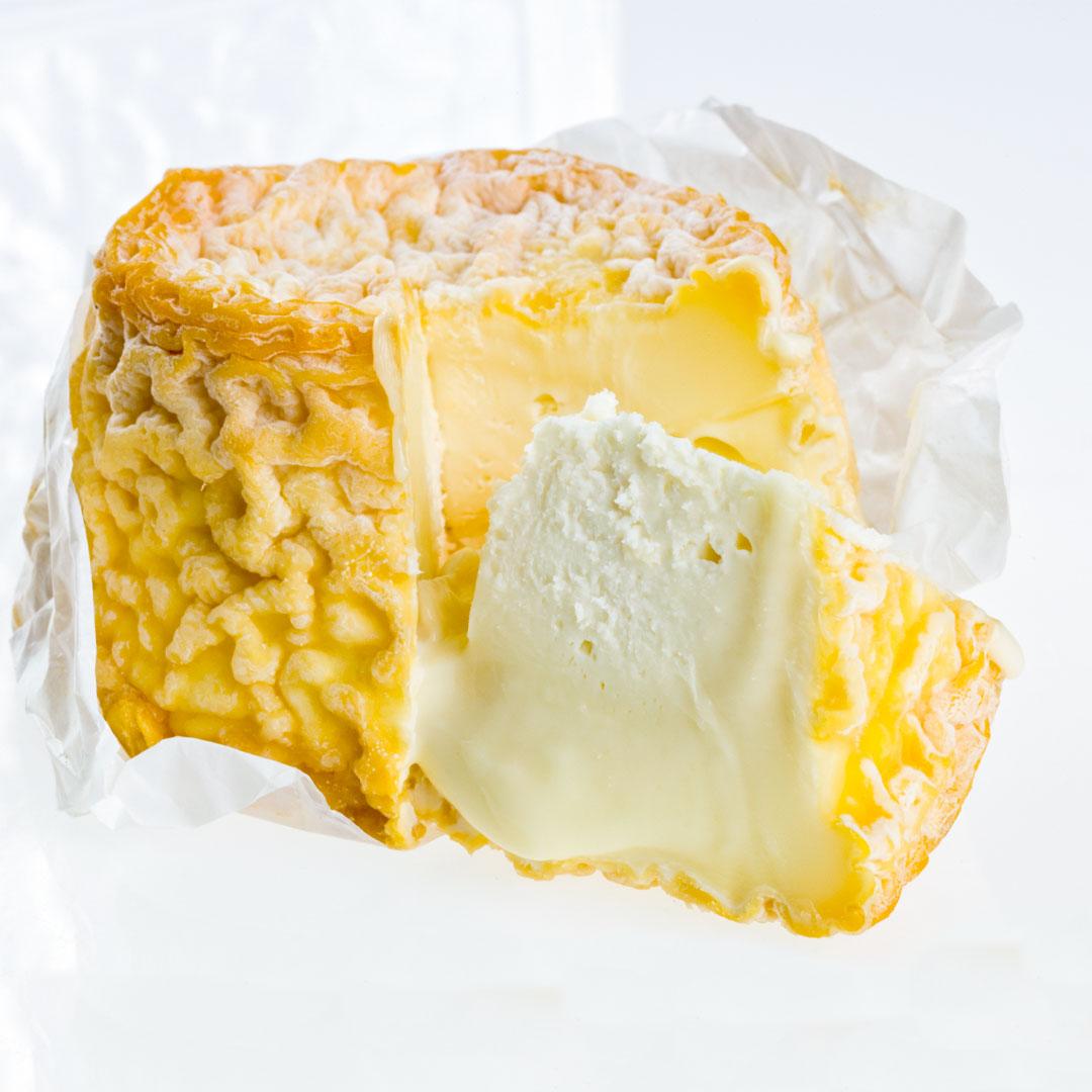 Langes en flott fransk kittmodnet ost