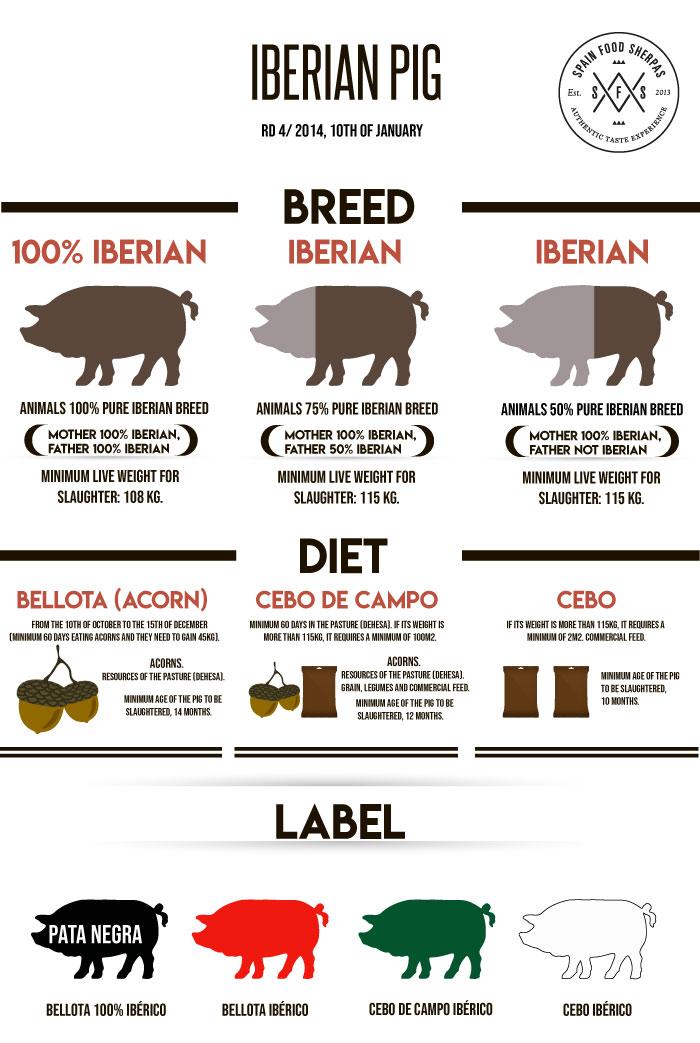 Ibericoskinke- variasjoner
